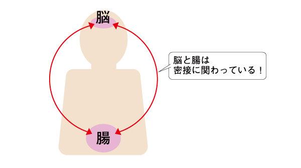 腸脳相関のイラスト.jpg