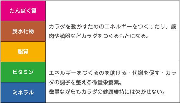 栄養素表.jpg
