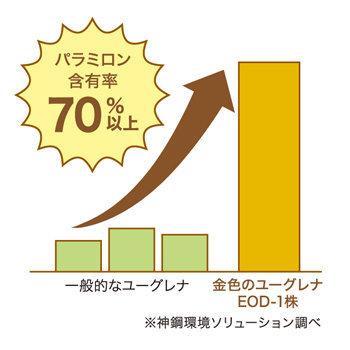 パラミロン含有率70%以上のグラフ